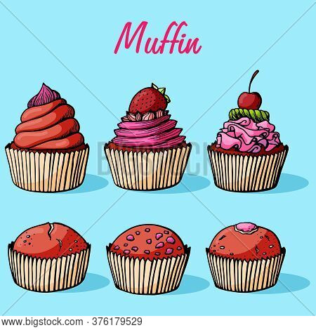 Muffin Set Simple Illustration . Cupcake Collection With Different Flavors . Colored Hand Drawn 6 Mu