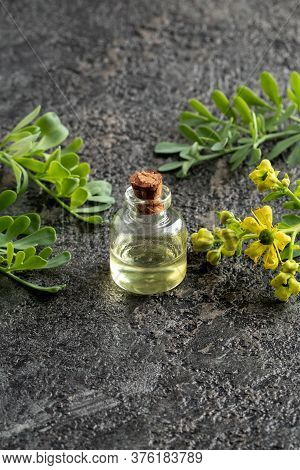 A Bottle Of Essential Oil With Blooming Common Rue, Or Ruta Graveolens Plant, With Copy Space