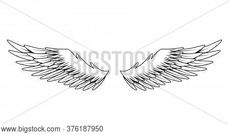 Vintage Heraldic Wings. Monochrome Stylized Birds Wings. Design Elements In Coloring Style. Abstract