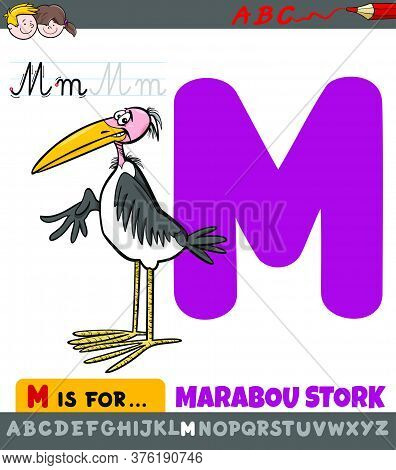 Educational Cartoon Illustration Of Letter M From Alphabet With Marabou Stork Animal Character For C