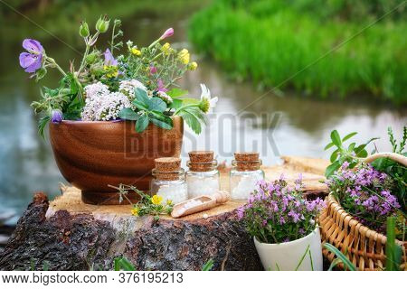 Three Bottle Of Homeopathic Globules, Mortars Of Medicinal Herbs, Basket Of Healing Plants On A Wood