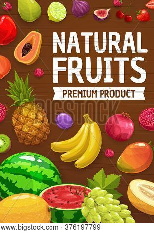 Tropical And Garden Fruits, Farm Market Harvest, Vector Pineapple, Banana And Watermelon. Exotic Tro