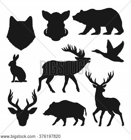 Animals Silhouettes, Hunting Vector Icons Of Wild Bear, Deer And Elk. Hunt Trophy Animals Boar Hog,
