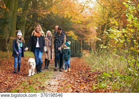 Multi-Generation Family Walking With Pet Golden Retriever Dog Along Autumn Woodland Path