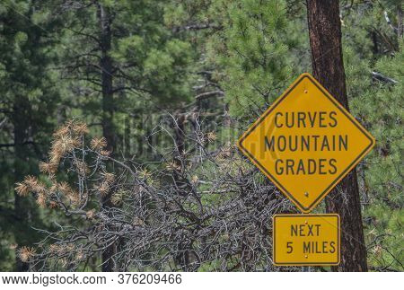 Curves And Mountain Grades Sign In The Arizona Pine Forest. Flagstaff Arizona