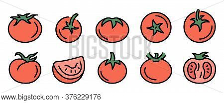 Tomato Icons Set. Outline Set Of Tomato Vector Icons Thin Line Color Flat On White