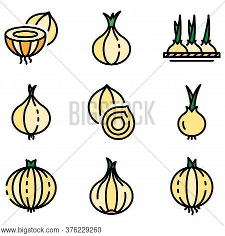 Onion Icons Set. Outline Set Of Onion Vector Icons Thin Line Color Flat On White