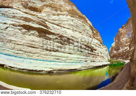 The canyon Ein Avdat is formed by the Qing River. Israel. Picturesque waterfall in the middle of the Negev desert. The greenish mirror lake. Photo taken with a fisheye lens