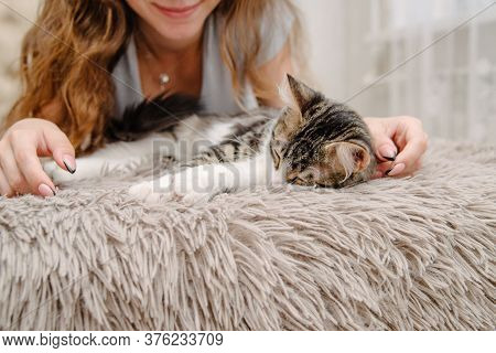Girl Stroking A Cat On The Bed