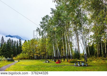 Picnic place. Wooden table and benches on the edge of the forest. Cloudy day in the Canadian Rockies. Concept of active, eco and photo tourism