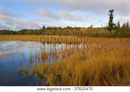 Wilderness September Lake