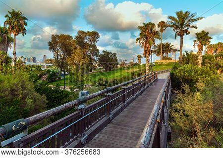 Picturesque bridge over a ravine. Evening twilight over Old Jaffa. Palm trees on the hill
