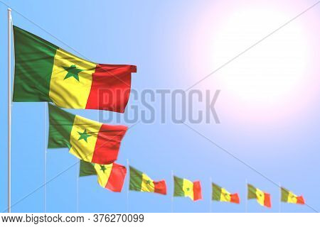 Beautiful Many Senegal Flags Placed Diagonal With Soft Focus And Empty Place For Text - Any Feast Fl