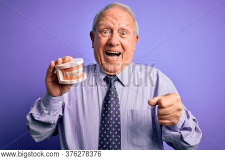 Grey haired senior man holding orthodontic prosthesis denture over purple background screaming proud and celebrating victory and success very excited, cheering emotion