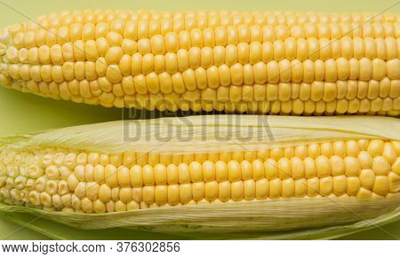 Close Up Fresh Corn Cobs At Green Background. Top View, Flat Lay, Copy Space, Place For Text, Concep