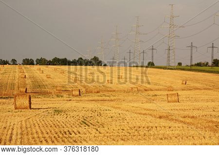 Fields Of Dry Ripe Wheat Against The Background Of Metal Pylons Of Electric Wires