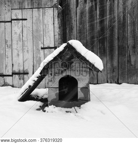 A Dog House With A Dog In It, Hid From The Snow And Cold During A Snowstorm.