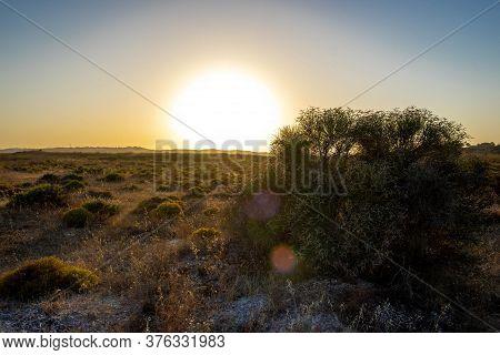 Sunset On The Alvor Walkways In The Algarve 2