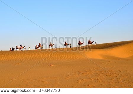 A Caravan Of Camels Carrying Tourists In Sam Sand Dunes, Thar Desert, Jaisalmer, India. Located In T