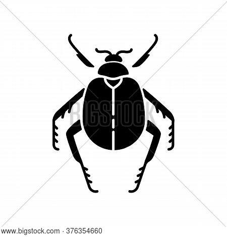 Scarab Beetle Black Glyph Icon. Small Arthropod, Egyptian Bug, Desert Inhabitant. Zoology, Entomolog