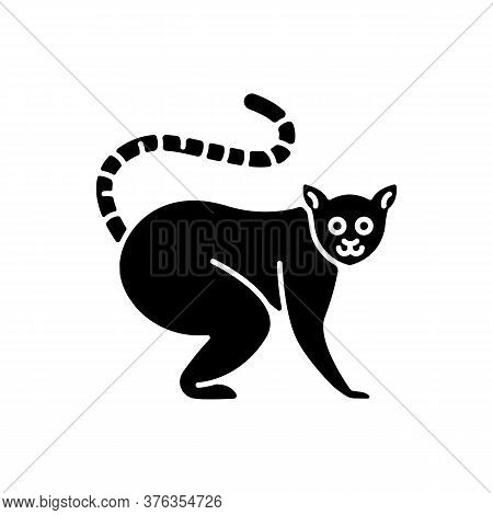Ring Tailed Lemur Black Glyph Icon. Adorable Exotic Animal, Tropical Rainforest Wildlife. Native Mad