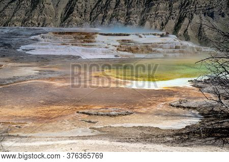 Canary Springs In Yellowstone National Park At The Mammoth Hot Springs Area