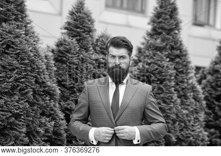 Successful And Motivated. Business Man Bearded Wear Perfect Fashionable Suit. Businessman Well Groom