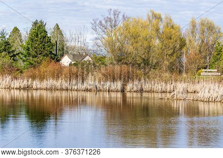Spring Landscape Of Small Lake In The City Park With Trees And Cloudy Sky.