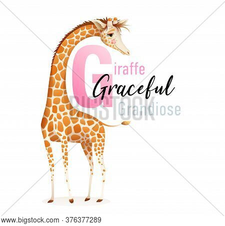 Animal Alphabet For Children, Letter G Is For Giraffe. Cute Graceful Giraffe Representing Letter G,