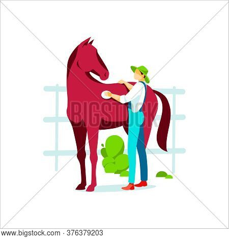 Male Farmer Grooming Horse. Agricultural Worker Or Professional Groomer In Overalls Taking Care Of A