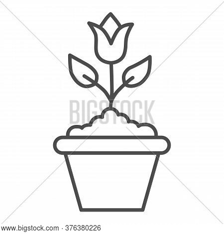 Flower In Flowerpot Thin Line Icon, Floral Concept, Plant In Flowerpot Sign On White Background, Pot