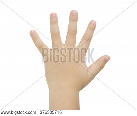 Children Hands Isolated On A White Background Without A Shadow. Item For Packaging, Design, Mockup A