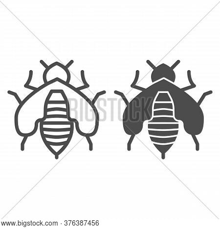 Bee Line And Solid Icon, Honey Concept, Honey Bee Sign On White Background, Honeybee Icon In Outline