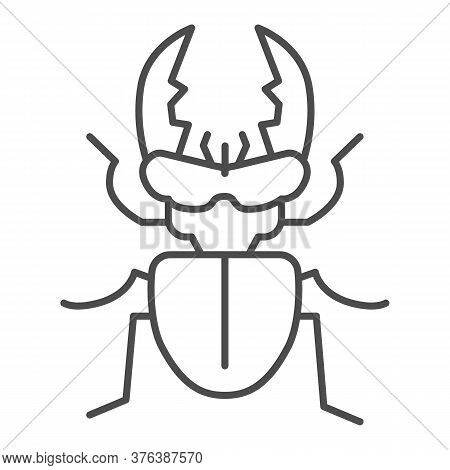 Stag-beetle Thin Line Icon, Insects Concept, Large Beetle Sign On White Background, Deer Bug Icon In