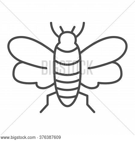 Insect Thin Line Icon, Insects Concept, Bee Sign On White Background, Flying Insect Icon In Outline
