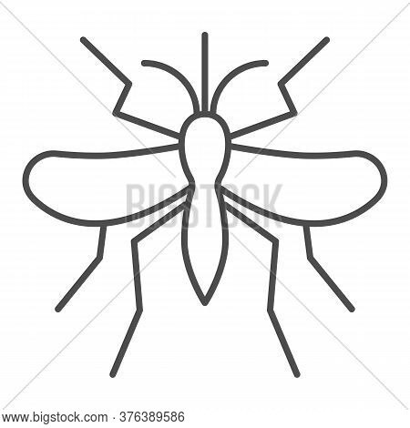 Mosquito Thin Line Icon, Insects Concept, Gnat And Pest Sign On White Background, Mosquito Insect Ic