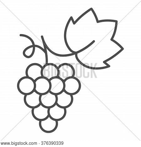 Bunch Of Grapes Thin Line Icon, Summer Concept, Grapes Sign On White Background, Bunch Of Wine Grape