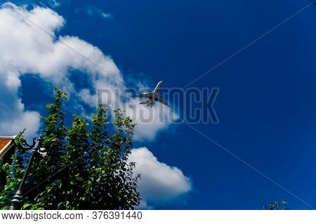 Flying Plane On The Background Of A Blue Sky With Clouds. A White Plane And An Indigo Sky. Airliner