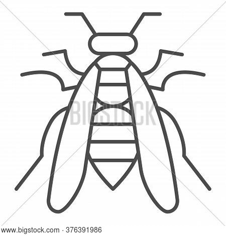 Bee Thin Line Icon, Insects Concept, Wasp Sign On White Background, Honeybee Icon In Outline Style F