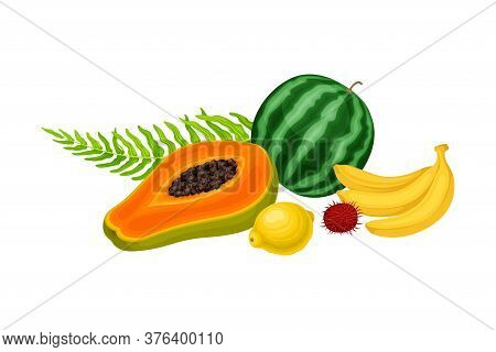 Juicy Fruits With Watermelon And Banana With Palm Leaves Hawaiian Vector Composition