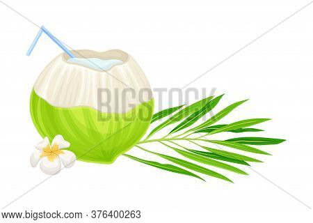 Cocktail With Straw In Coconut And Palm Leaves With Plumeria Flower Hawaiian Vector Composition