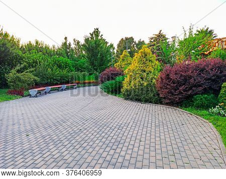 Sochi, Russia, Summer Of 2020. Deserted Paths Among Trees And Beautiful Flower Beds For Walks In Soc