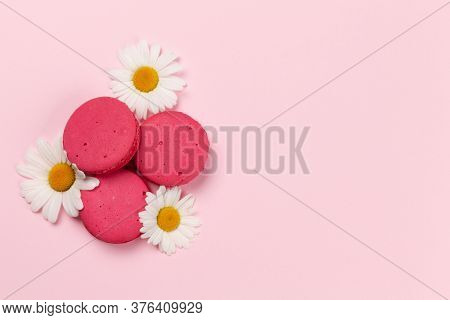 Camomile flowers and macaroon cookies over pink background. Greeting card template with copy space