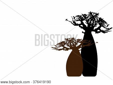 Boab Or Baobab Tree Background With Copy Space For Your Text, Vector Isolated, Andasonia Tree Silhou