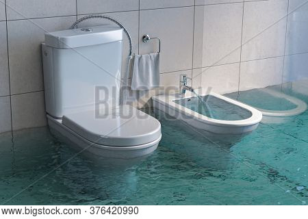 Broken toilet and bidet overflowing. 3d illustration