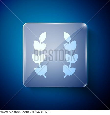 White Laurel Wreath Icon Isolated On Blue Background. Triumph Symbol. Square Glass Panels. Vector