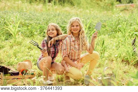 Agriculture Concept. Growing Vegetables. Planting Vegetables. Summer Activity. Sisters Cute Kids Hel