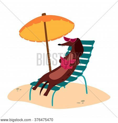 A Vector Illustration Of A Cute Dachshund Wiener Dog With Sun Umbrella And A Book On A Beach