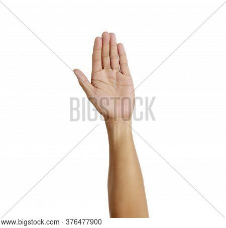 Woman Hand Show 5 Finger Sign On White Background. Number Five. Woman Open Palm Five Finger On White