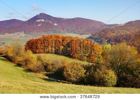 autumnal view from Strazovske Vrchy Slovakia - Slovak Republic Europe